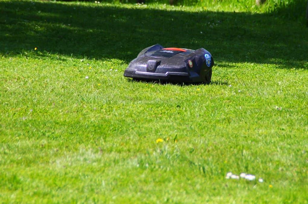 Ein Rasenmähroboter bei der Arbeit
