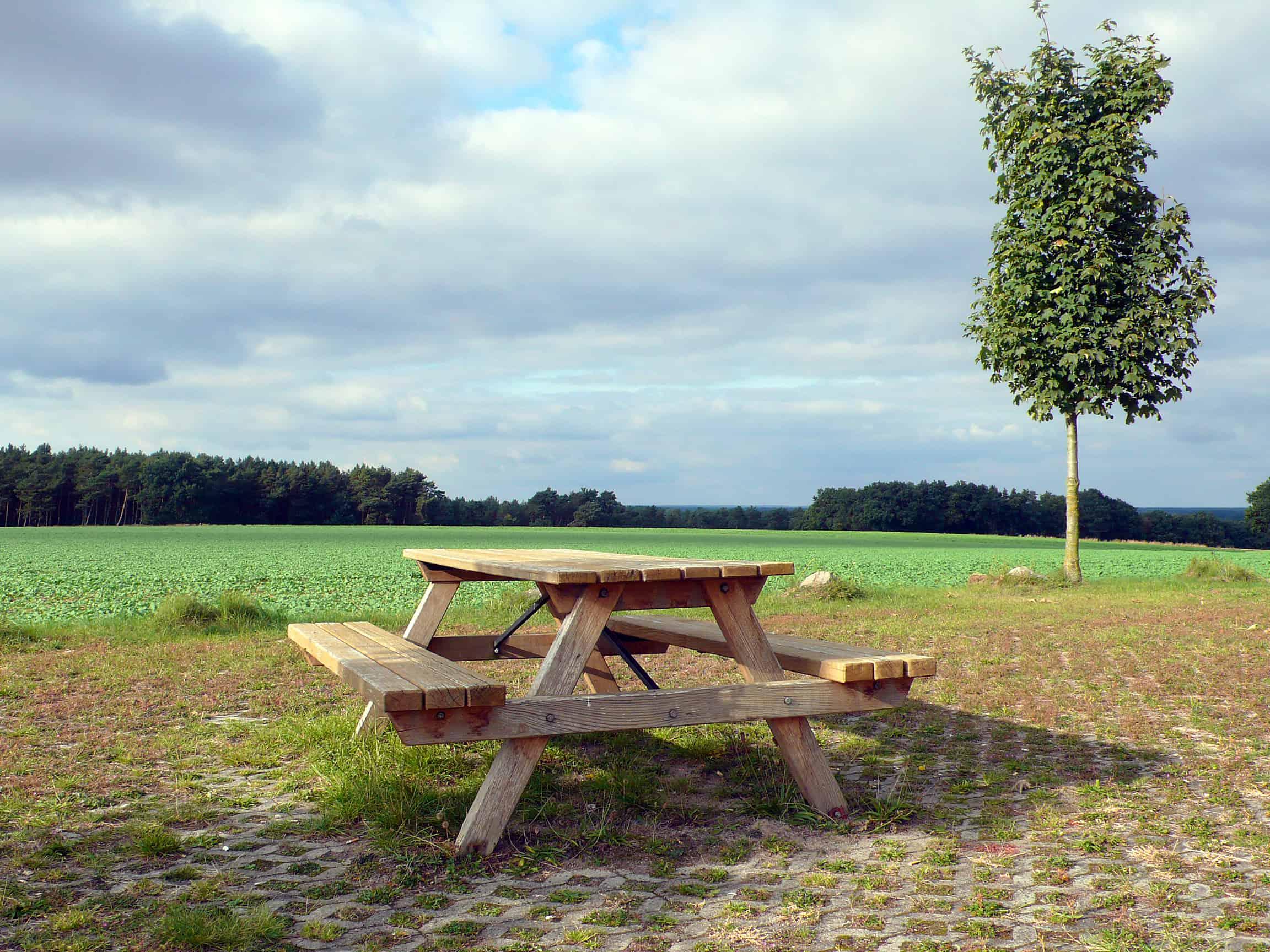 Ein hölzerner Tisch samt Bänken auf einem Rastplatz