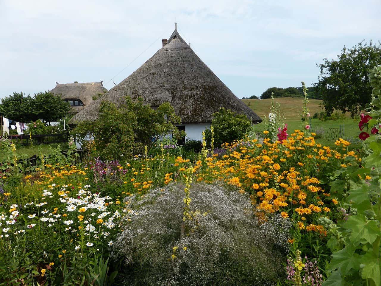 Blick in einen Bauerngarten