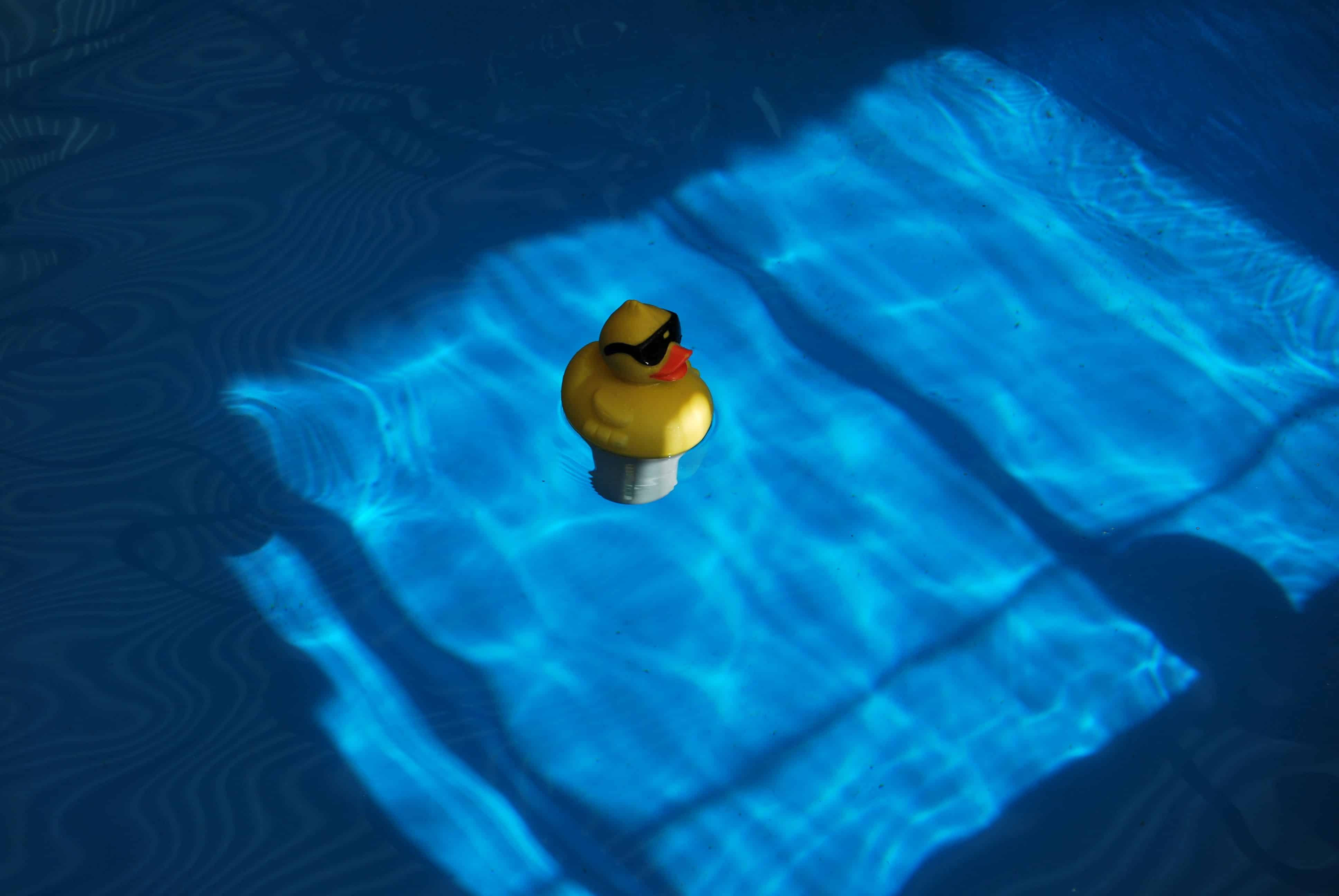 Ein cooles Quietscheentchen im Pool
