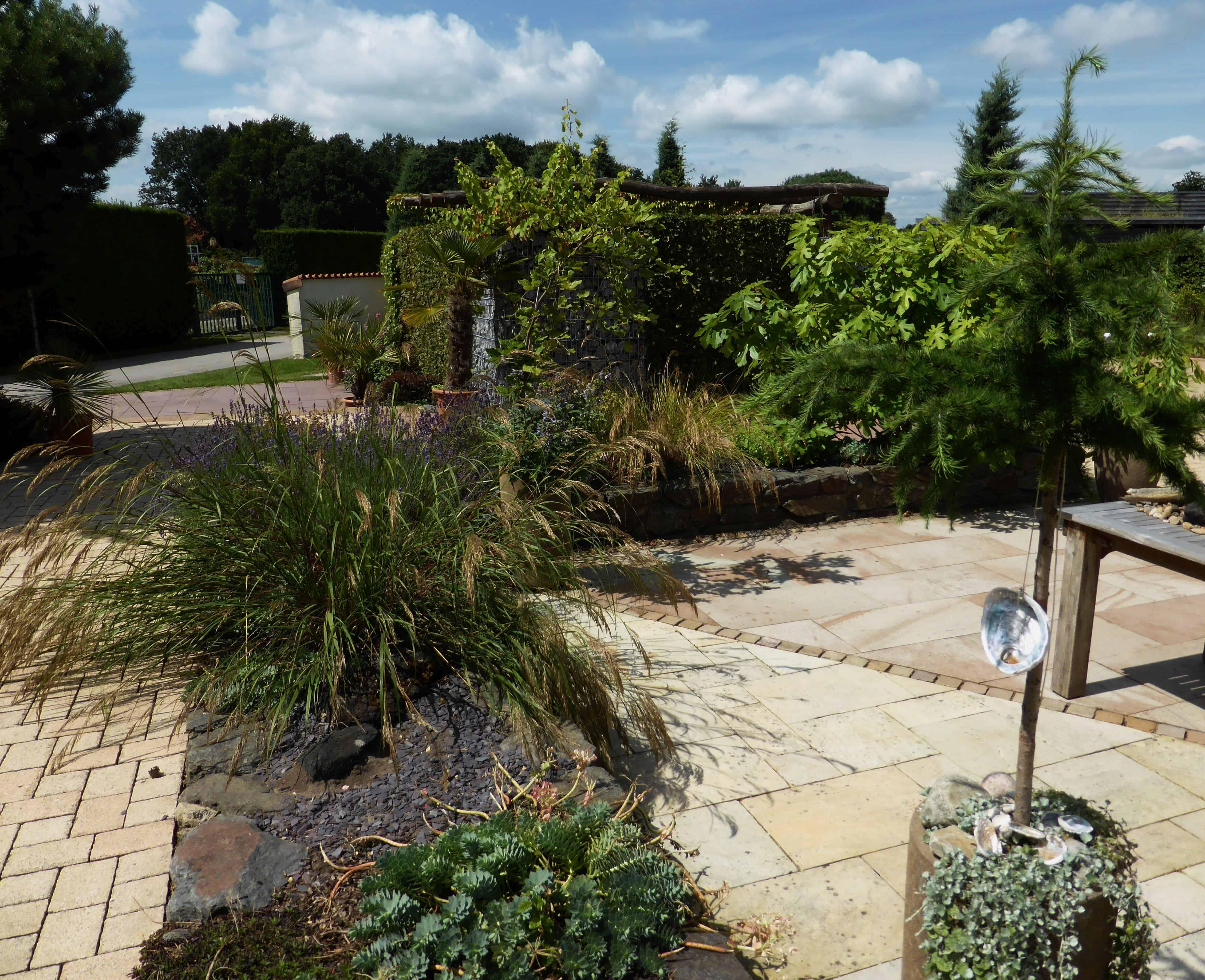 Terrasse mit mediterranen Pflanzen