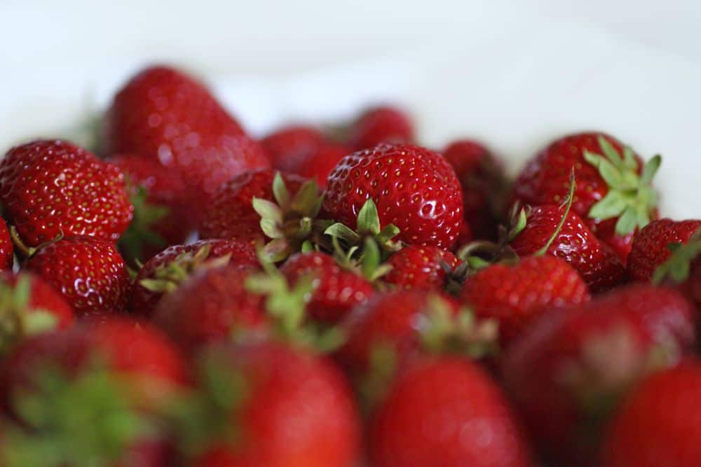 Reife Erdbeeren